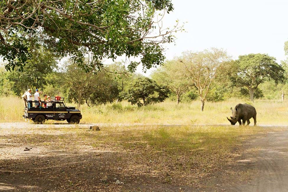 Fathala Wildlife Reserve, Senegal